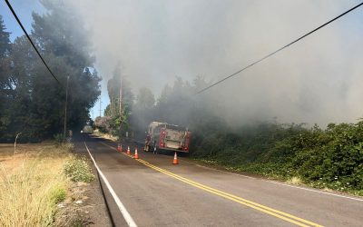 Brush Fire and Essential Workers!